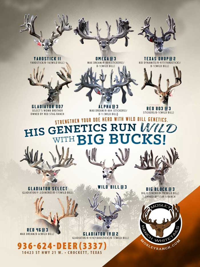 Our Deer Breeding facility is in a class of its own.